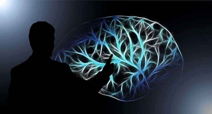 Ученые доказали разрушительное воздействие коронавируса для мозга