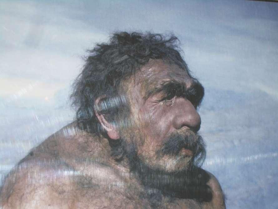 Неандертальцы вымерли из-за детской инфекции