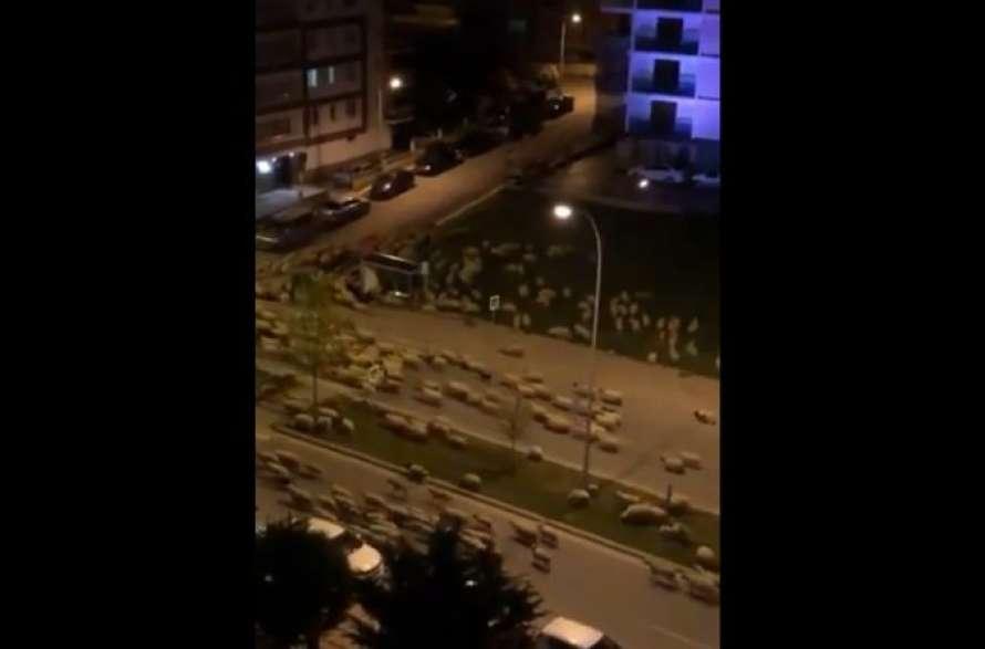 Пустынные улицы турецкого города оккупировали сотни блеющих овец