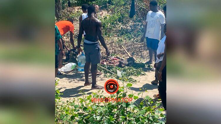 Нигерийцы зарезали и зажарили коз на пляже в Днепре