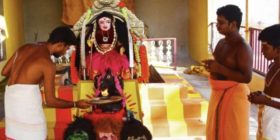 В Индии построили храм в честь «богини коронавируса»
