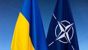 Украине напомнили о выполнении «домашнего задания» для вступления в НАТО